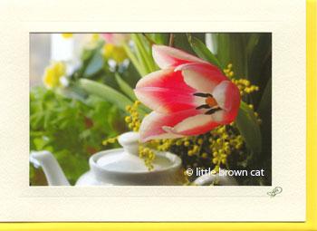 Tulip and Teapot Notecard