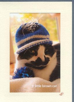 Cat in a Hat Notecard