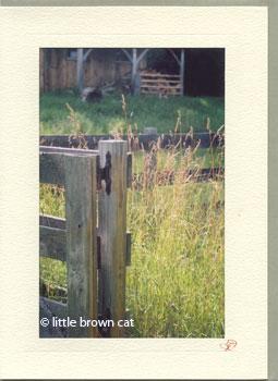 David's Gate Notecard
