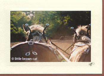 Driving Miss... Notecard